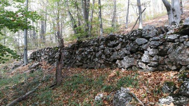 zidul de la cioclovina11