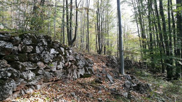 zidul de la cioclovina2