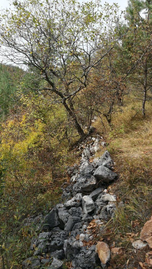 zidul de la cioclovina8